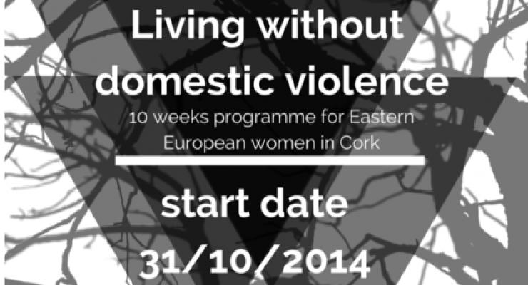 Przemoc domowa w Irlandii